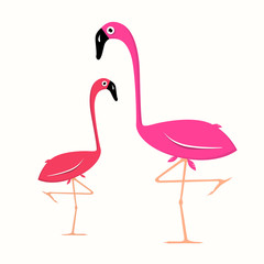 Two Flamingo Illustration on White Background