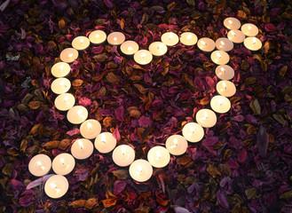 Corazon Sobre hojas Secas sin flor