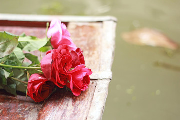 Red rose placed on the bow.