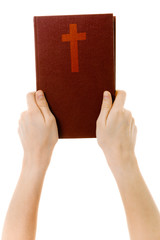 on a white background hands holding a bible