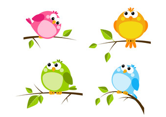 Set of cute color birds