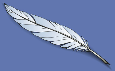 Vector drawing of wight bird feather on dark background