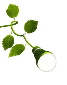 Led Bulb with Green Stem - Green Energy concept
