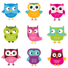 Wall Murals Owls cartoon Owls set