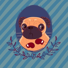 Pug-boxer