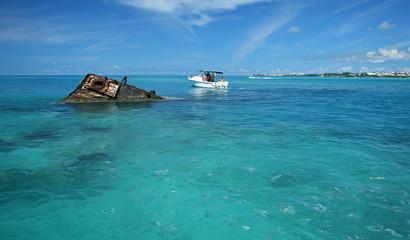 Garden Poster Shipwreck Tropical Shipwreck - Vixen