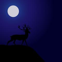 Night Deer Silhouette