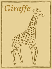 vector illustration of giraffe