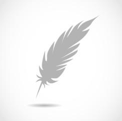 Vector grey feather shape