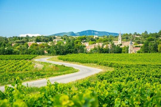 Vignes et village en Provence, France