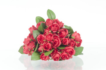 Photos of red roses for Valentine's Day, isolated on white