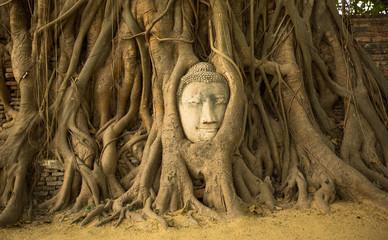 Head of Buddha in Ayutthaya, Thailand.