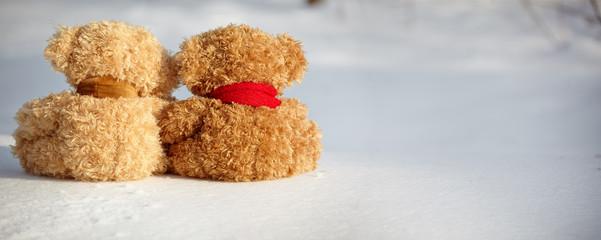 two teddy bears on a snow around each