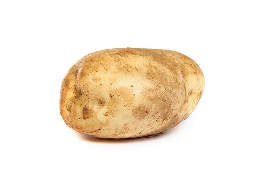 One potato isolated on white