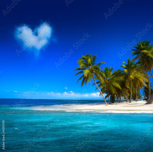 Пальмы, солнце, небо бесплатно