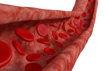 Blood cells flowing around in vein