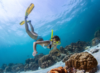 Fototapeta Snorkeling obraz