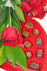 Valentine's Day  roses and chocolates