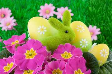Easter Bunny with Easter Eggs on Green Grass