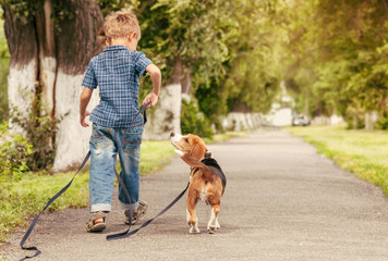 Let's play together! Boy walk with puppy