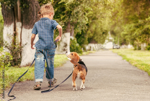 Wall mural Let's play together! Boy walk with puppy