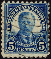Postage stamp ca. 1922 showing the portrait of US president Theo