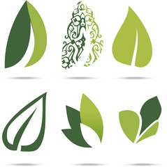 Collection of green leafs on white background