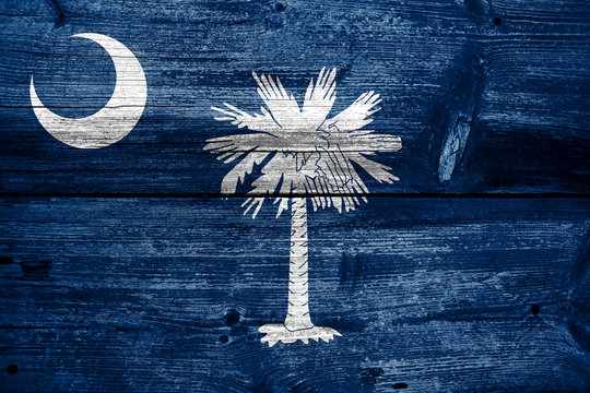 South Carolina State Flag painted on old wood plank texture