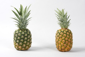 Green and Yellow Ananas