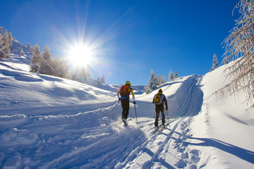 cross-country skiing Wall mural