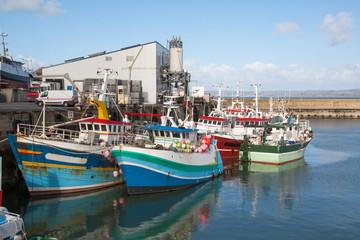 Le port de Douarnenez dans le Finistère en Bretagne
