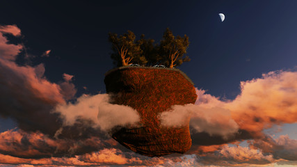 trees on a flying rock