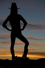 silhouette of cowgirl overlooking a valley at sunset