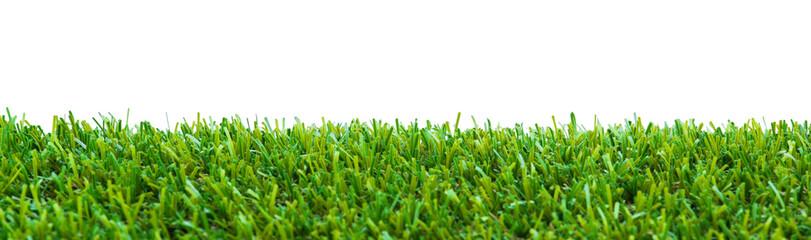 Close up of golf green grass