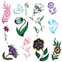 illustration of flowers of different sizes and colors