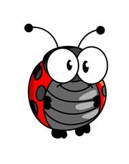 Smiling happy little ladybug or ladybird