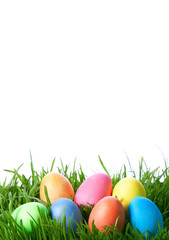 easter color eggs on green grass