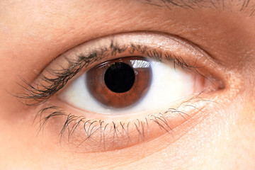 brown eyes girl