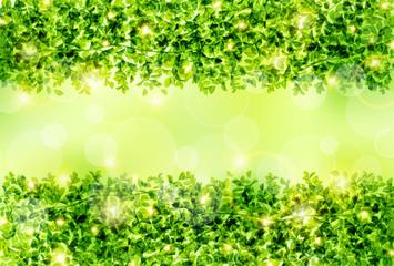 緑のフレーム