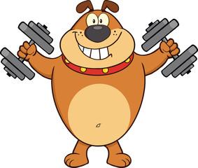Smiling Bulldog Cartoon Character Training With Dumbbells