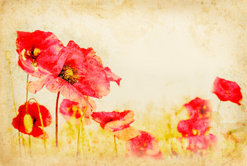Red poppy flowers on vintage paper.