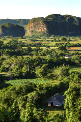 Typical view of Valle de Vinales with mogotes in Cuba