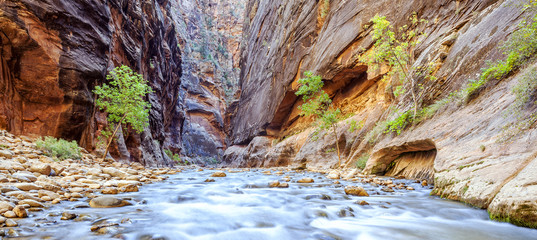 Foto op Canvas Natuur Park The iconic bend of the Virgin River