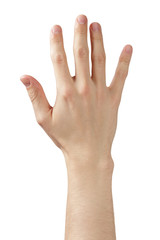 adult man hand showing five fingers