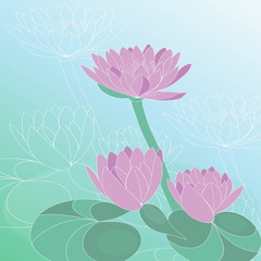 Lotus flower. Hand drawn vector art