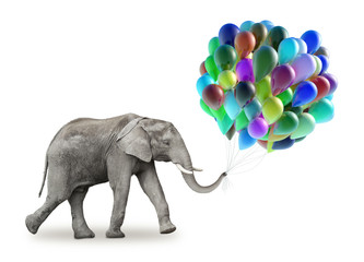 Wall Mural - Elephant with a colorful balloons