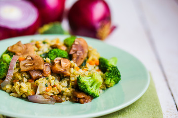 Brown rice with vegetables(onions,mushrooms,broccoli) and tofu