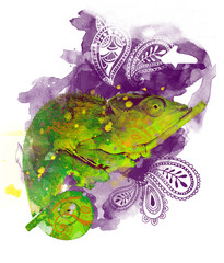 watercolor chameleon with spalas ink texture