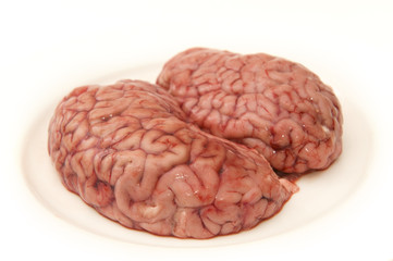 Brain on a plate. This belonged to a horse.