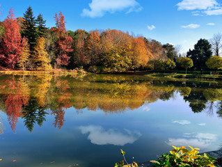 very nice autumn scenery reflected on the water